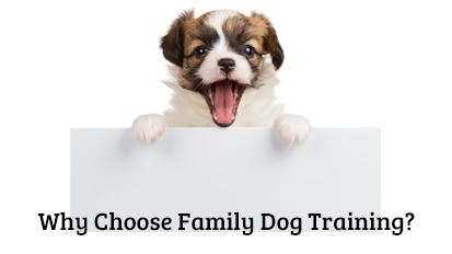 Why Choose Family DogTraining